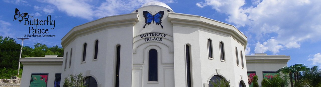 The Butterfly Palace & Rainforest Adventure - Branson, MO 65616 - Base Camp Gift Shop