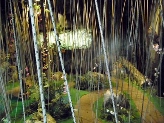 The Butterfly Palace and Rainforest Adventure - Branson, Missouri 65616 - Great Banyan Tree Adventure