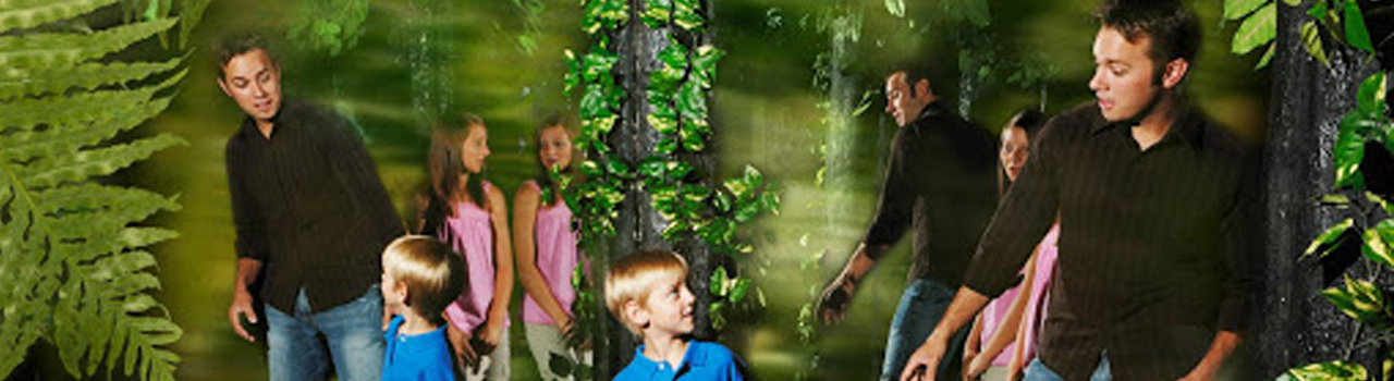 The Butterfly Palace & Rainforest Adventure - Mirror Maze - Branson, Missouri 65616