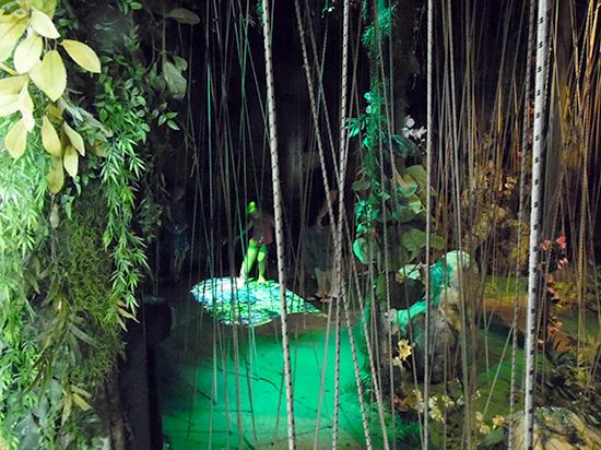 The Butterfly Palace & Rainforest Adventure - Branson, MO 65616 - Banyan Tree Adventure