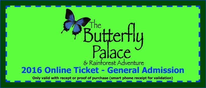 The Butterfly Palace & Rainforest Adventure - Branson, MO 65616 - Tickets