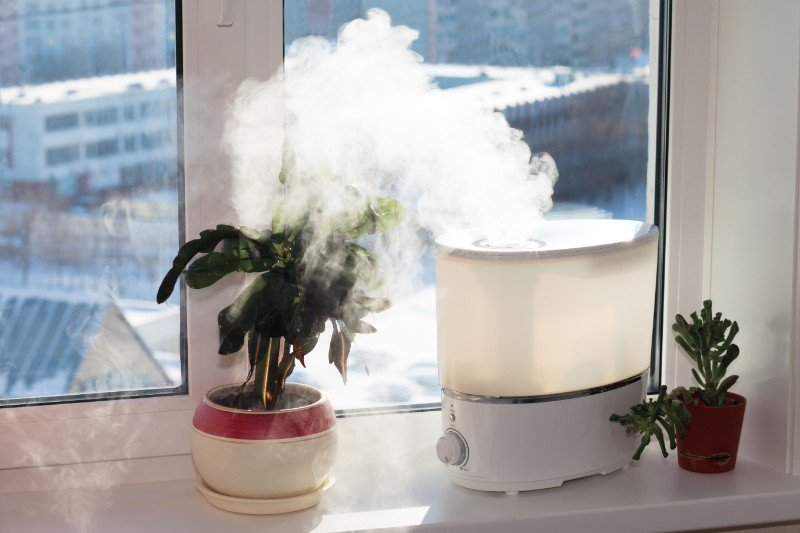 humidifier solution for your home