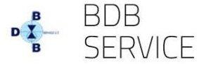 logo bdb service