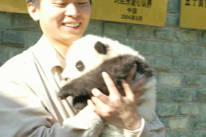 PandaClips