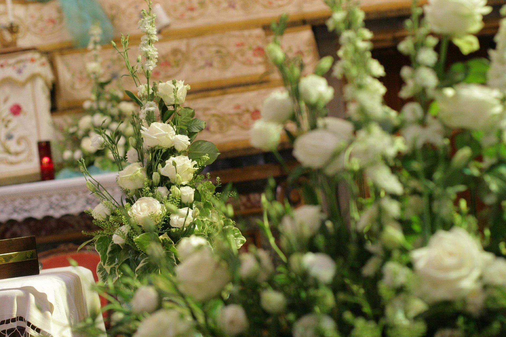 servizio completo di piante e fiori per addobbare il