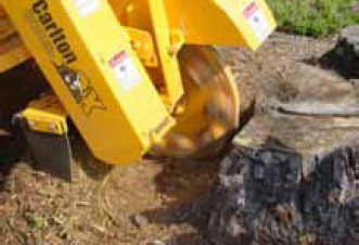 Tree machine we use for professional lawn maintenance in Calico Rock