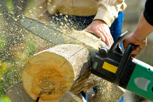Professionals proving best stump grinding services in Calico