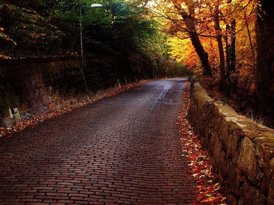 aberdeen-autumnpark