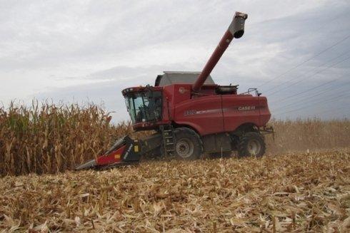 Lavorazione mais sfibrato.