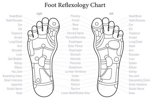 Can Reflexology Benefit Fertility