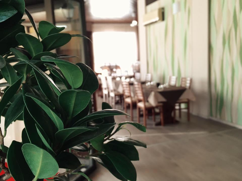 foglie in primo piano e sullo sfondo tavoli con sedie