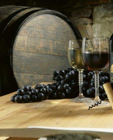 refrigerazione aziende vinicole