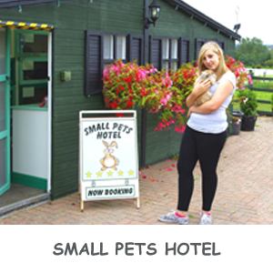 Small pets hotel