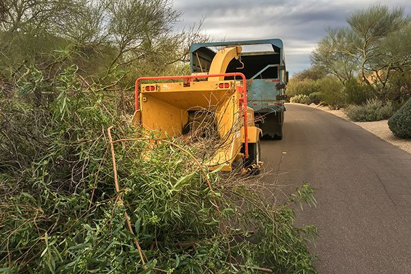 Oahu team using chipper machine to remove tree