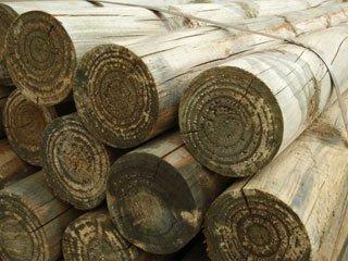 Treated Lumber Fort Walton Beach FL