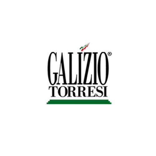 galizio torresi - logo