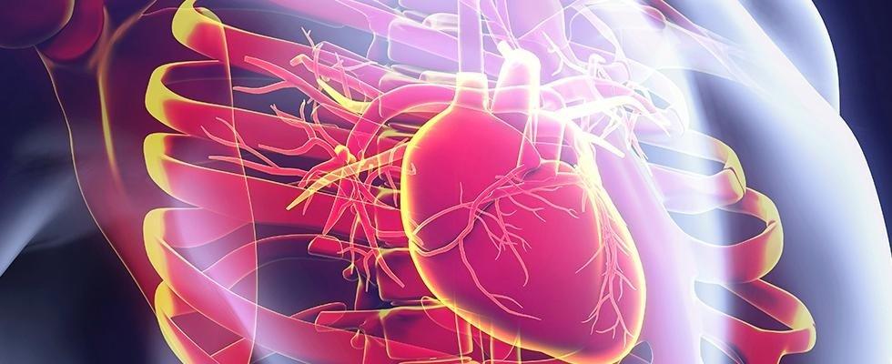 Cura malattie cardiovascolari