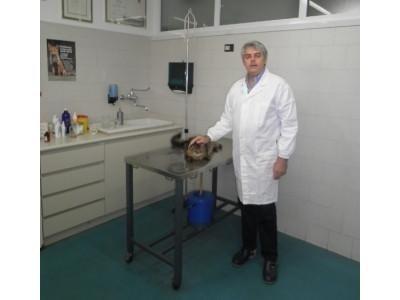servizi veterinario