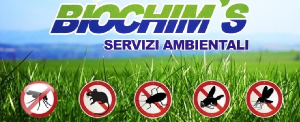Biochims Servizi Disinfestazione