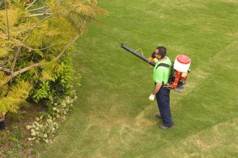 servizi igiene ambientale