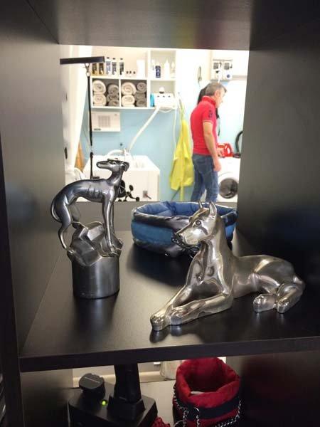vista di un negozio di animali con statuette di cani in acciaio