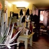 vivaio, piante da interno, vivaio fiori