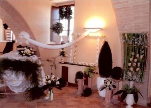 piante per cerimonie, piante ornamentali