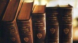 Diritto Civile Cassino, studio legale Assante FR