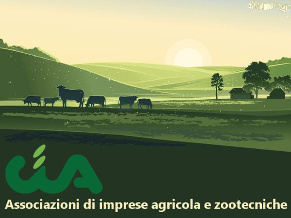 Assistenza imprese agricole marche