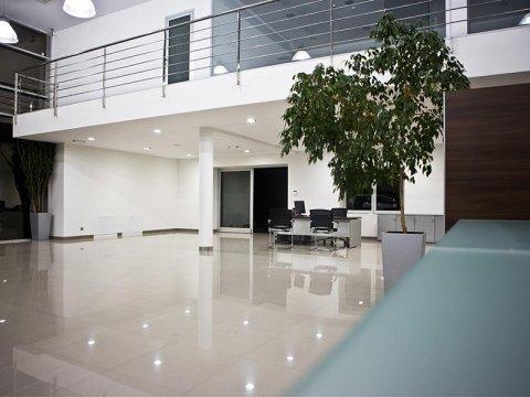 pulizia e trattamento pavimenti