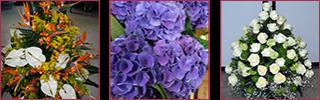 composizioni floreali per inaugurazioni