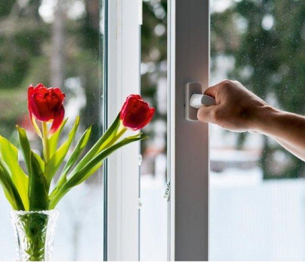 mano di un uomo sta aprendo una porta di una sala con vaso di fiori