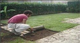 consulenze giardinaggio