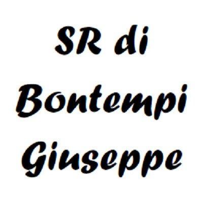 S.R. Di Bontempi Giuseppe Carpenteria Medio Pesante - Logo