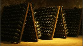 produzione vino franciacorta