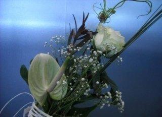 mazzo di fiori sul bianco