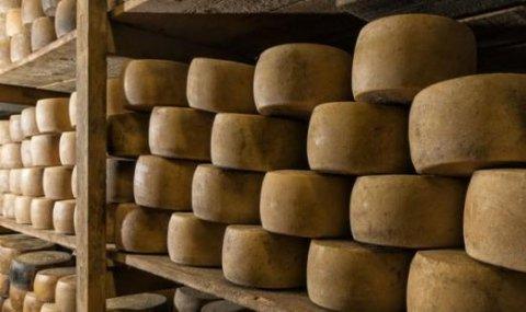 formaggi cuozzo