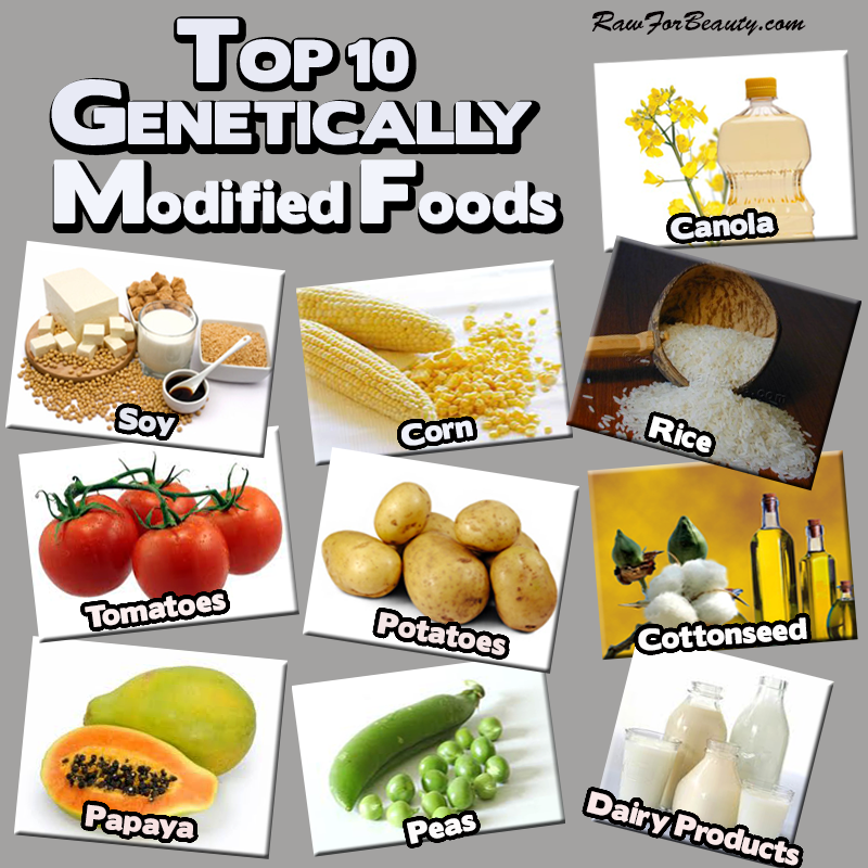 GMO_top 10 genetically modified foods
