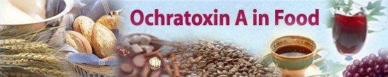 Ochratoxin A in food