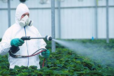 Spraying organophosphate pesticides
