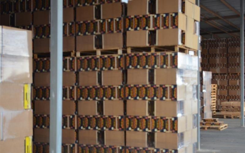 commercio imballaggi cartone