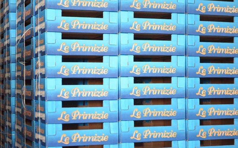 imballaggi cartone