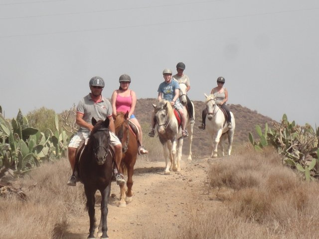 Horse Riding Adventures in Tenerife - Official Website - Horse Riding Adventures in Tenerife - Official Website