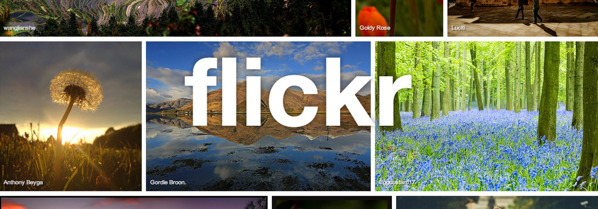 Flickr Marketing Agency Solution Web Designs