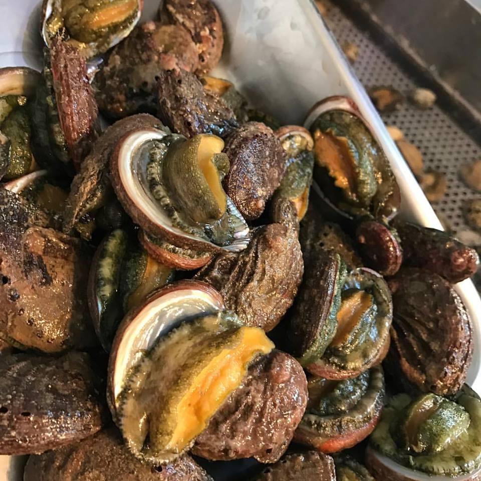 dei molluschi freschi visti da vicino