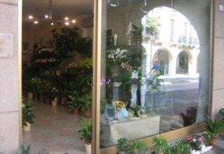 negozio fiori