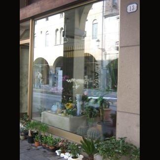 vetrina fiorista