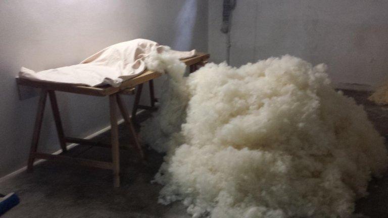 lana Scarteggiata