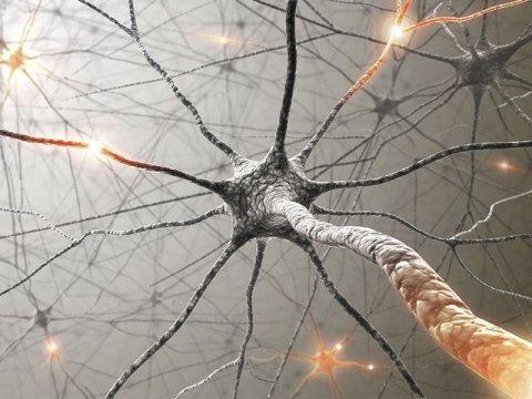 visite specialistiche neurologiche