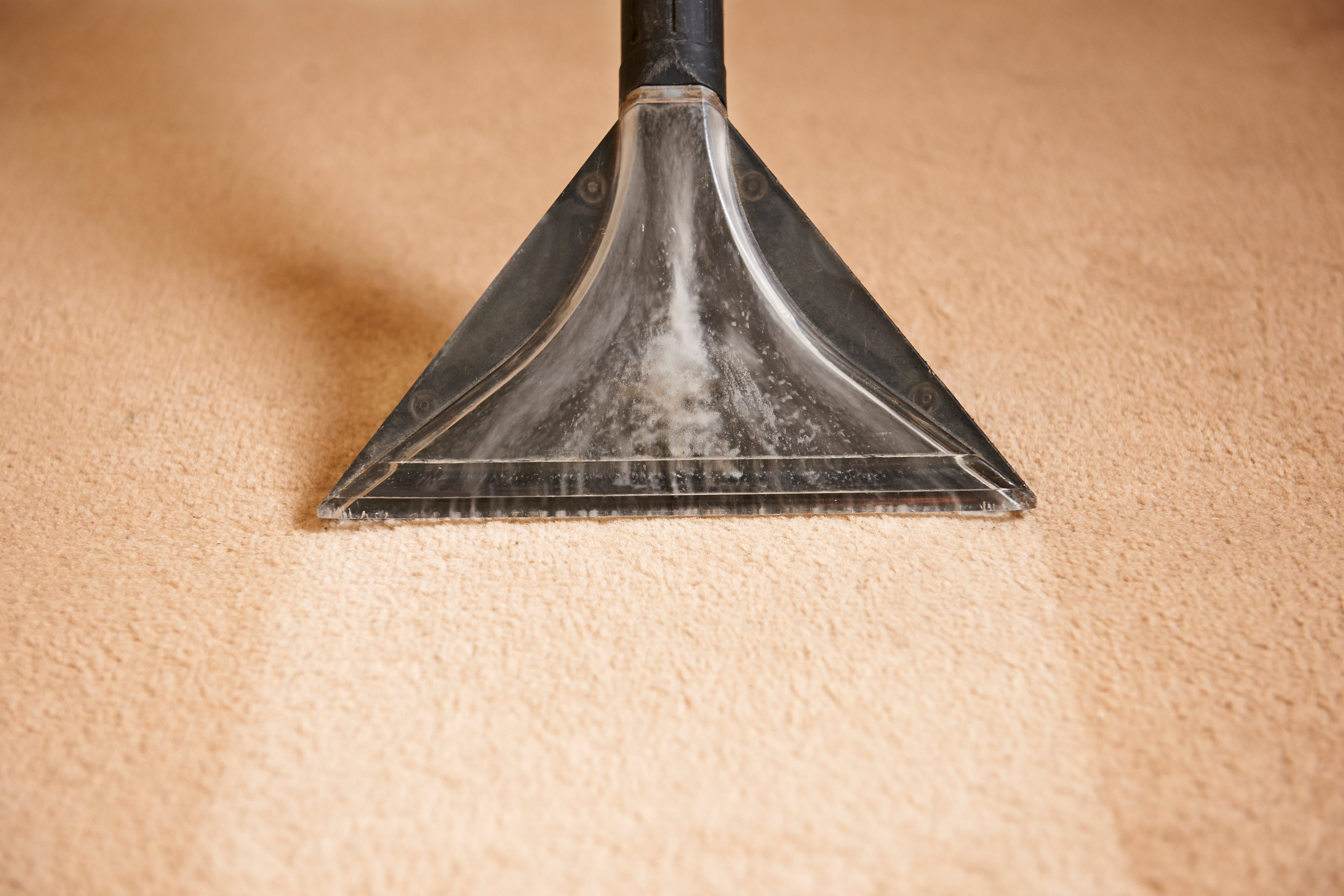 Wet Carpets, cleaning